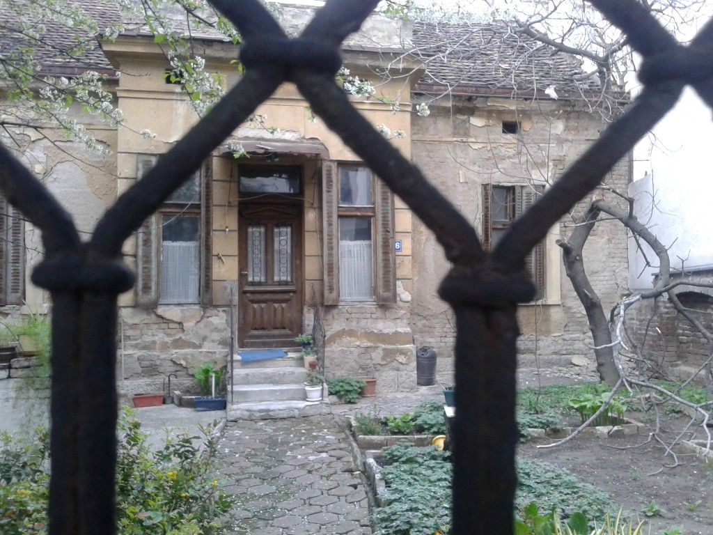 Little house with garden in the middle of Belgrade