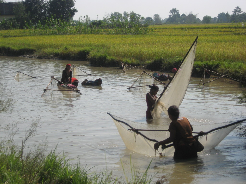 Fishing in a pond in the Nepal lowlands