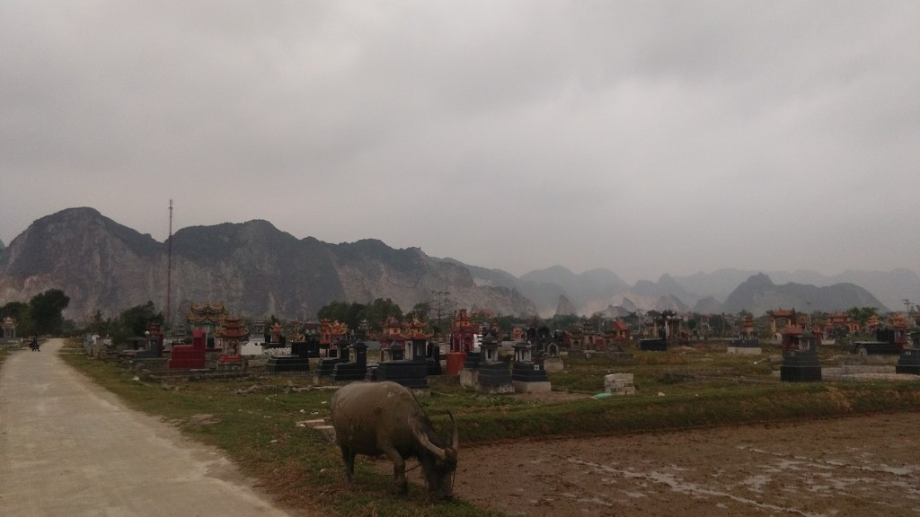 close to Ninh Binh