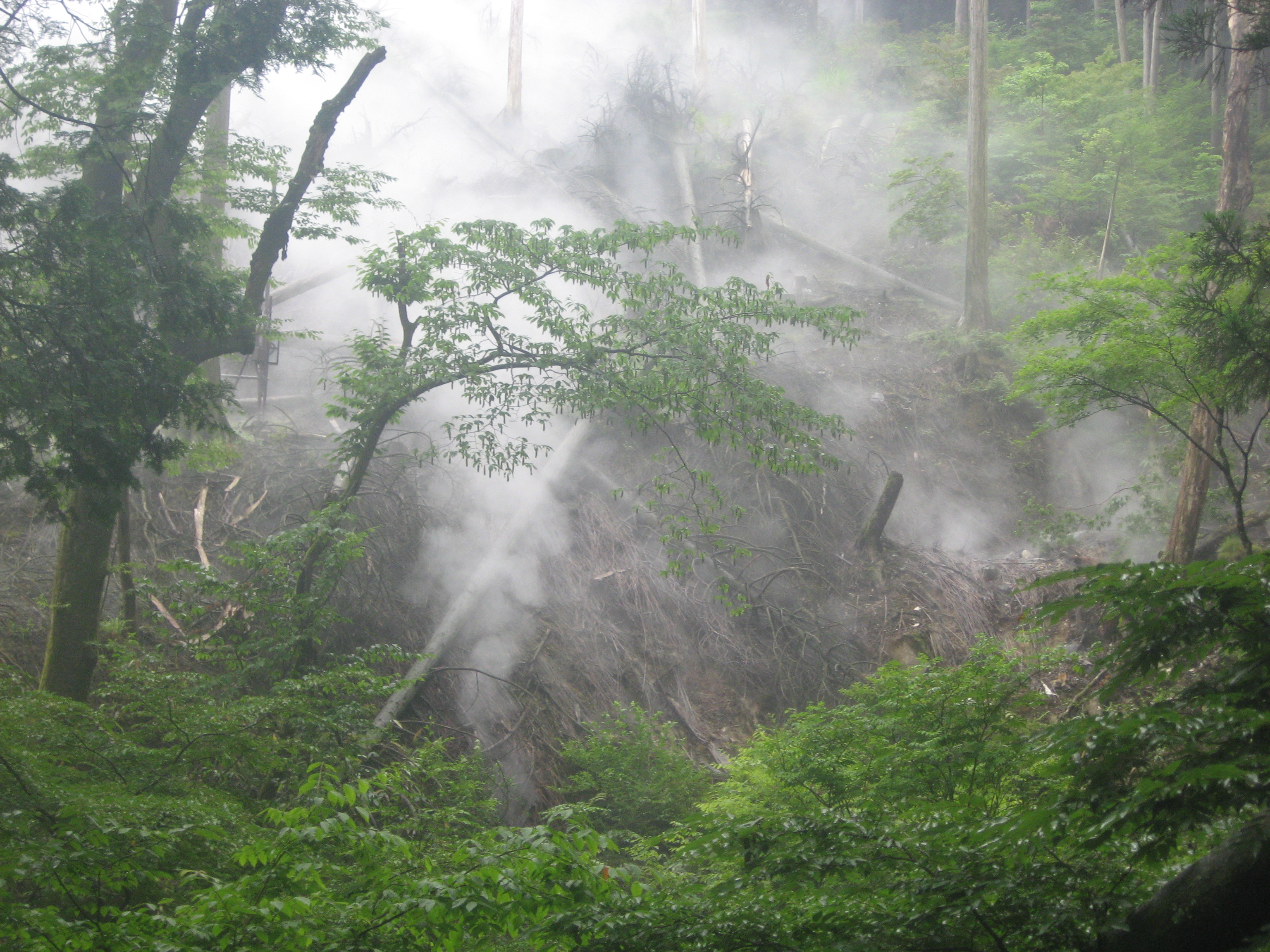 Around Mt. Fuji. Steam comes out of the ground everywhere.