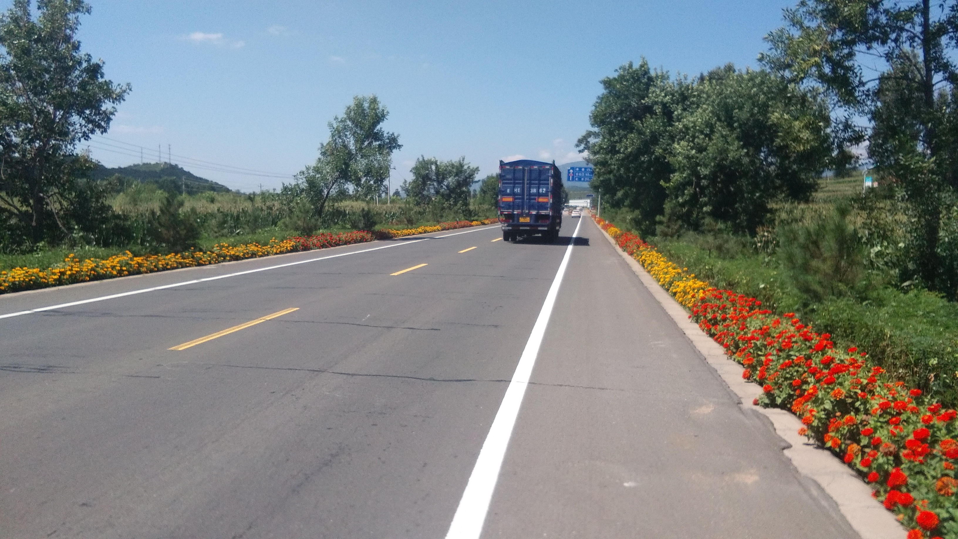 Perfectly decorated and maintained roads. Very common.
