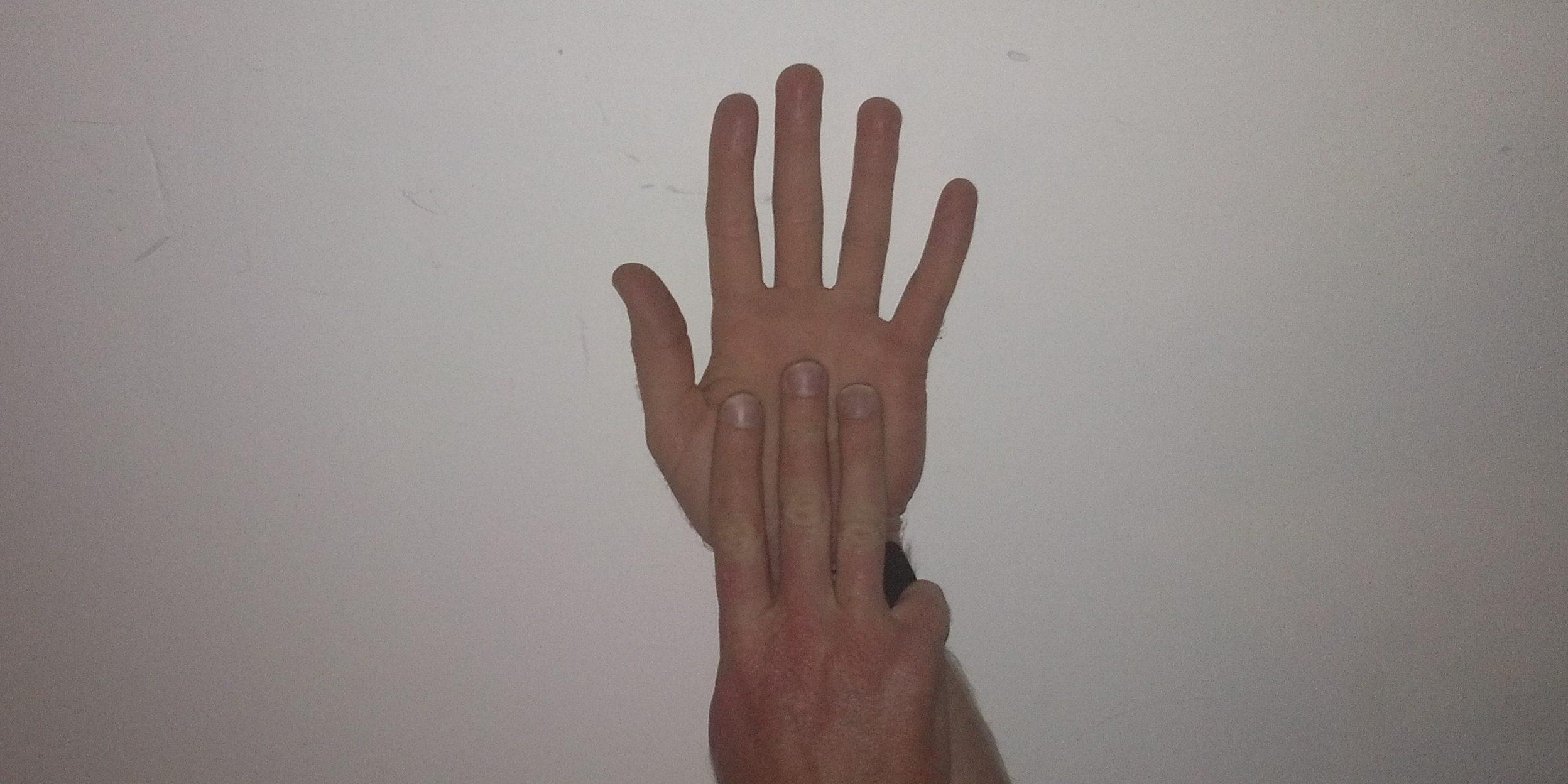 Japanese finger-8